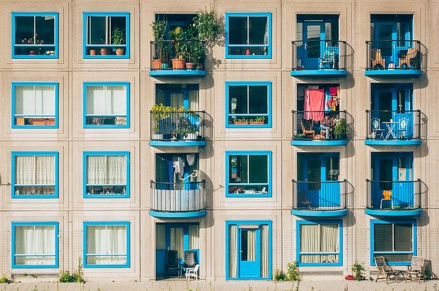 modré okenice
